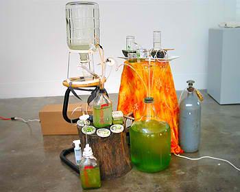 DIY Algae/Hydrogen Bioreactor